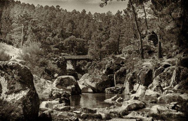 landscape32
